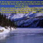 Bible Study Materials - Picture 13