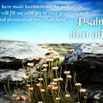 Psalm 16:11 Wallpaper