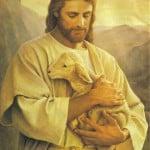 Jesus Good Shepherd 06