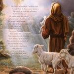 Jesus Good Shepherd 11