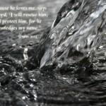 Psalm 91:14 Wallpaper