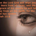 Bible Verses Picture 0816