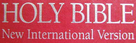 New International Version NIV Bible PDF