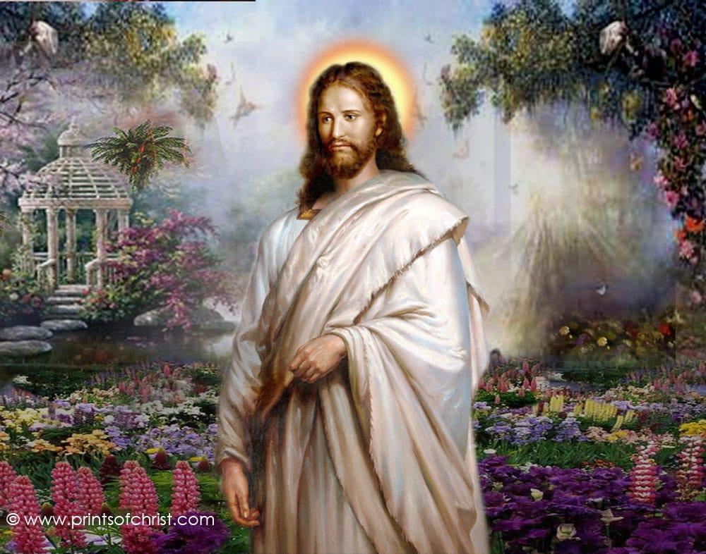jesus today devotional journal pdf