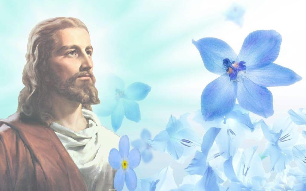 holy bible new international version free download pdf