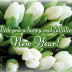 2012 New Year Greeting Cards 17