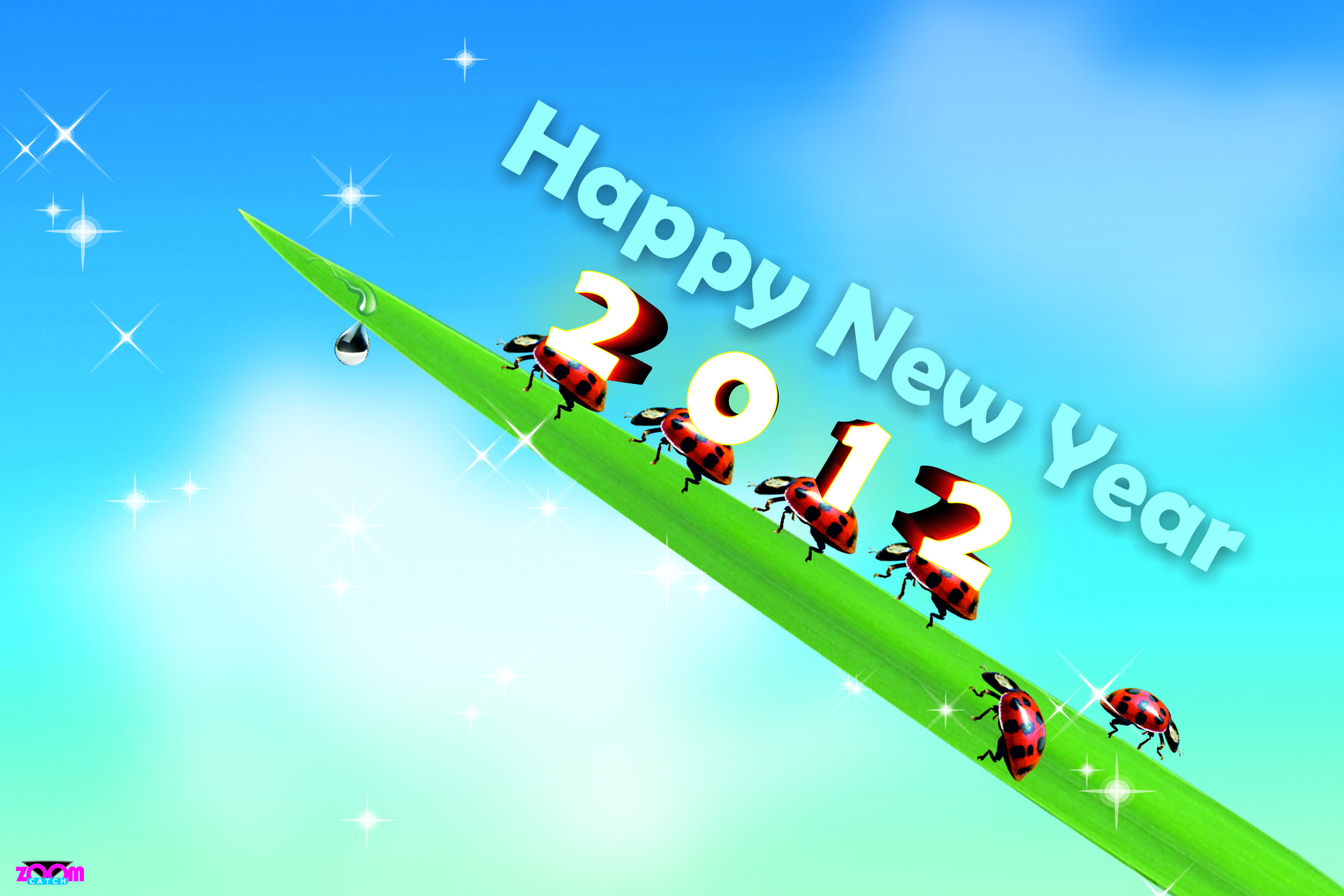 50 New Year Hd Wallpapers 2012
