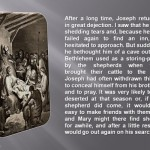 Birth of The Child Jesus slide 04