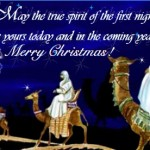 Christmas Greeting Cards 19