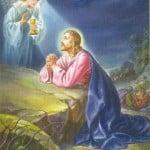 Jesus Christ Praying Wallpapers 07