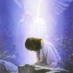 Jesus Christ Praying Wallpapers 11