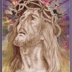 04 Blooming Pain of Jesus