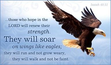 Like An Eagle I Will Fly